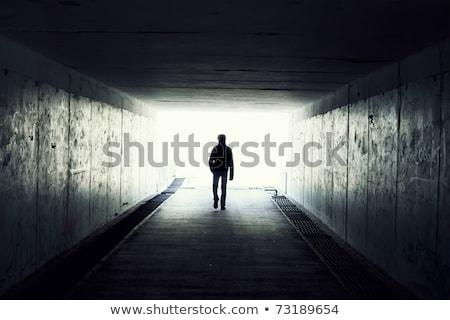 Emerging from Shadow Stock photo © AlienCat