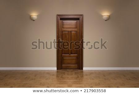Fából készült ajtó viharvert kék textúra vasaló Stock fotó © trgowanlock