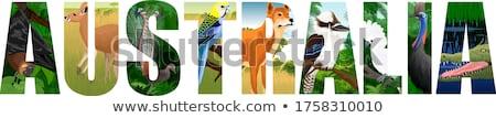 śmiechem pary ptaków po Zdjęcia stock © david010167
