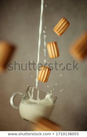 ビスケット · 行 · チョコレート · 孤立した · 白 - ストックフォト © badmanproduction