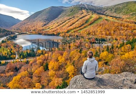 novo · inglaterra · cair · outono - foto stock © arenacreative