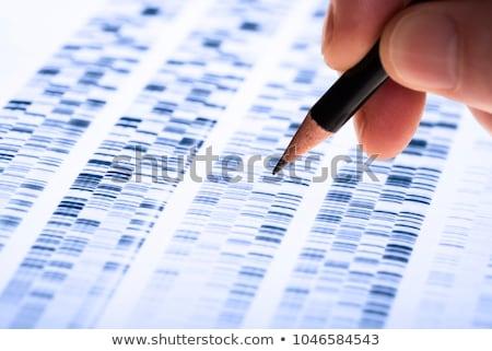genetikai · kutatás · fejlesztés · tudomány · adat · test - stock fotó © lightsource