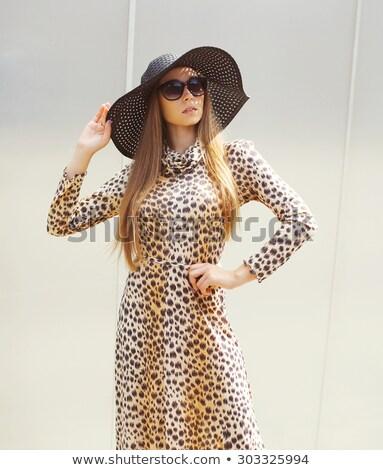 Stockfoto: Mooie · blonde · vrouw · luipaard · print · jurk · vrouw