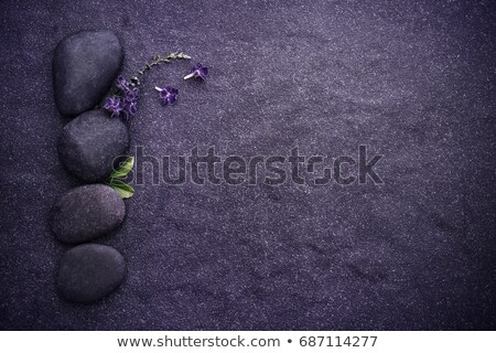 plate with stones in balance stock photo © compuinfoto