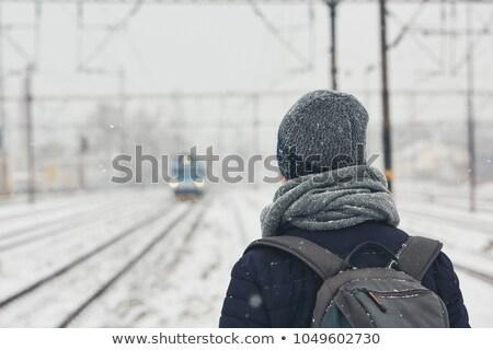 stad · zwaar · sneeuw · boom · man · licht - stockfoto © meinzahn