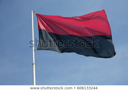 Flag Organization of Ukrainian Nationalists Stock photo © mayboro