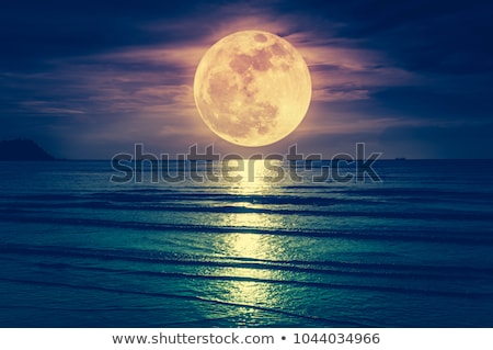 Dolunay deniz siyah ay gece ufuk çizgisi Stok fotoğraf © Zhukow