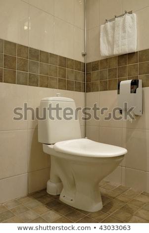 moderno · a · casa · branca · banheiro · banheira · clarabóia · mármore - foto stock © shivanetua