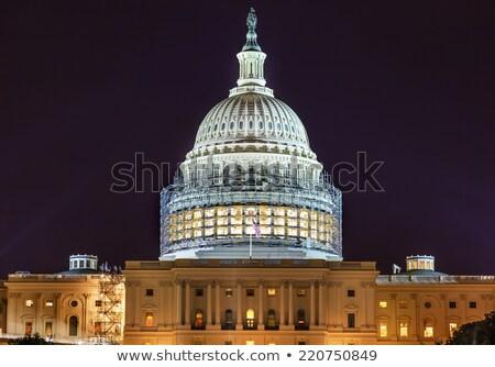 политику · Соединенные · Штаты · Правительство · политический · символ · американский · флаг - Сток-фото © billperry