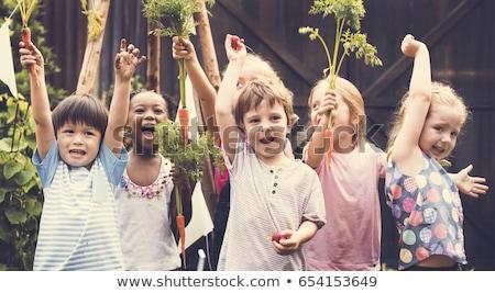 Farm School Stock photo © Lightsource