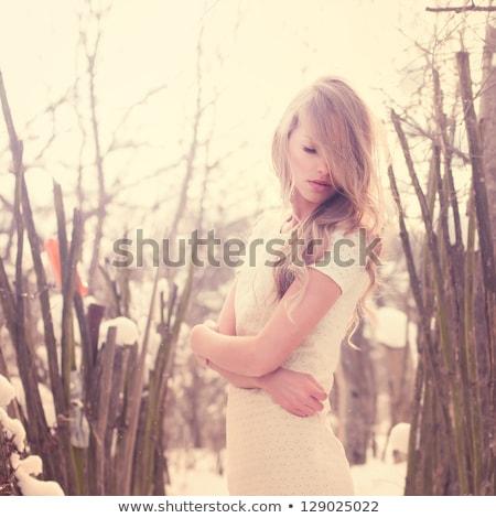 ブロンド · 少女 · 公園 · 冬 · 日 · 小さな - ストックフォト © Kor