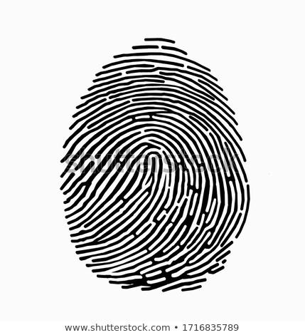 Отпечатки пальцев следов черно белые вектора печать чернила Сток-фото © PokerMan