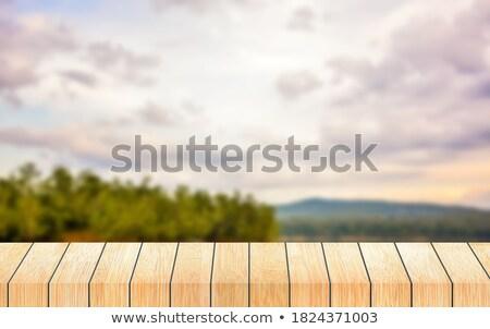 landscape presenting mountains and cloudy sky stock photo © konradbak