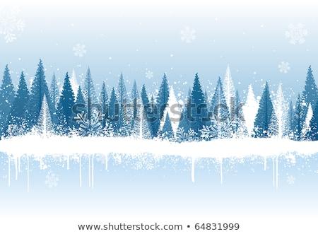 Digitalmente generato blu fiocco di neve bianco Foto d'archivio © wavebreak_media