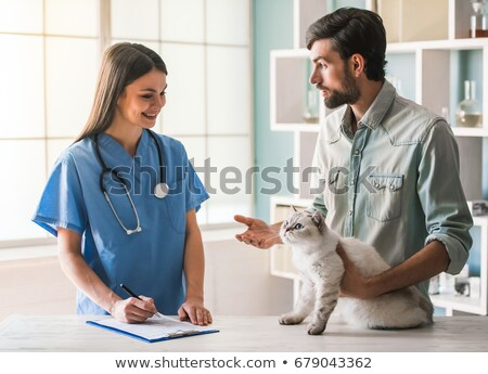 vet examining a cat with stethoscope stock photo © wavebreak_media