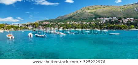 Belo turquesa praia Croácia água paisagem Foto stock © tommyandone