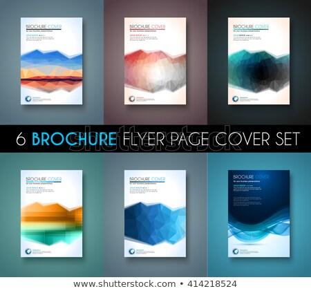 Brochure modèle flyer design couvrir Photo stock © DavidArts