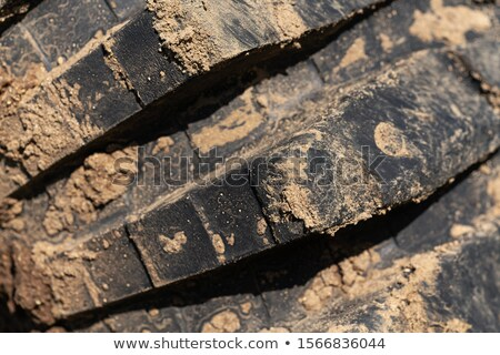 Close-up of worn and muddy tire Stock photo © viperfzk