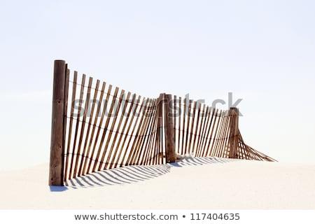 Fence on a beach Stock photo © njnightsky