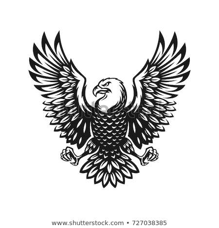 Emblem of White Bird with shield. Hawk military logo. Vector ill Stock photo © popaukropa