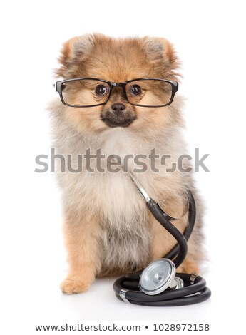 Young cute friendly nurse isolated on white wearing glasses.  Stock photo © gravityimaging