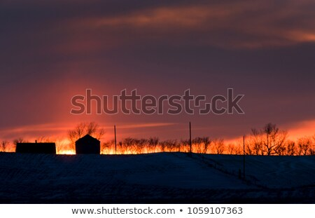 WInter Sunset in Saskatchewan Stock photo © pictureguy