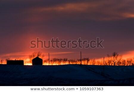 schemering · winter · avond · landschap · berg · hut - stockfoto © pictureguy