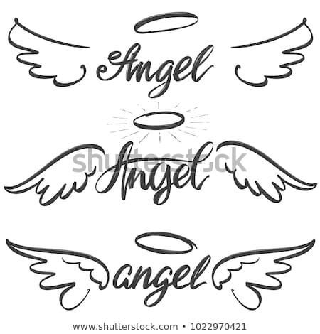 Stilizált angyalszárnyak festett fehér művészet toll Stock fotó © blackmoon979