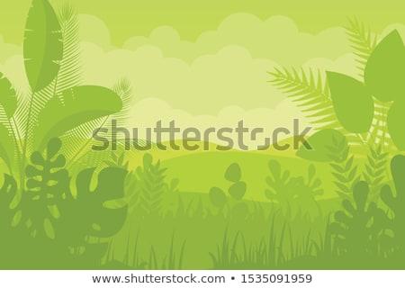 groene · vector · tuin · witte · hek - stockfoto © kkunz2010