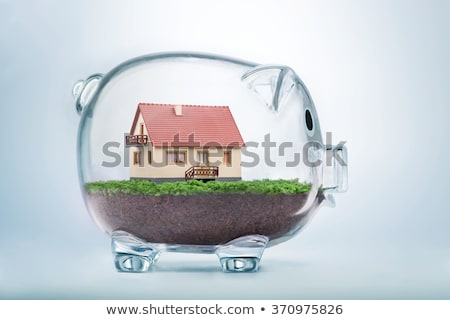 Home budget concept with piggy coin bank Stock photo © stevanovicigor
