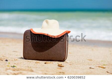 写真 帽子 ブラウン スーツケース 素晴らしい 晴れた ストックフォト © Massonforstock
