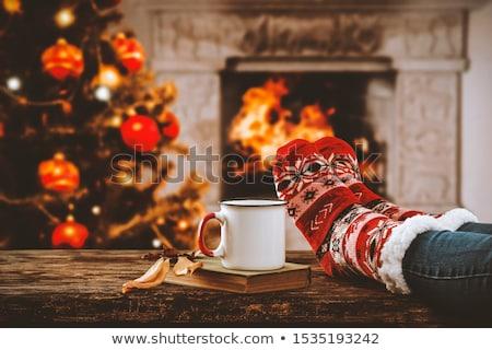 kat · christmas · decoratie · kitten · Rood - stockfoto © adrenalina