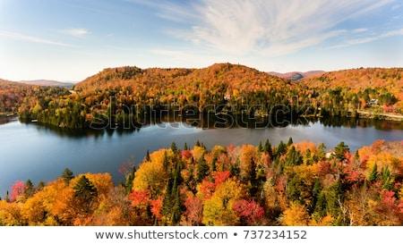 湖 秋 色 青空 水 オンタリオ ストックフォト © brianguest