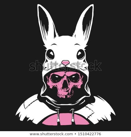 Rabbit skull pattern. White bunny with skeleton head with ears b Stock photo © popaukropa