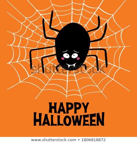 Halloween tatil örümcek örümcek ağı mutlu Stok fotoğraf © pashabo