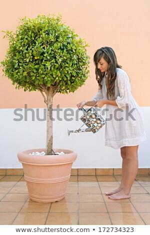 Nő tart virágok belső udvar jókedv portré Stock fotó © IS2