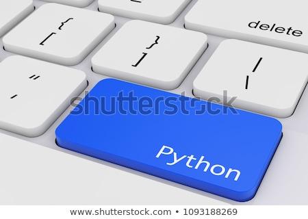 cloud application closeup of blue keyboard key 3d stock photo © tashatuvango
