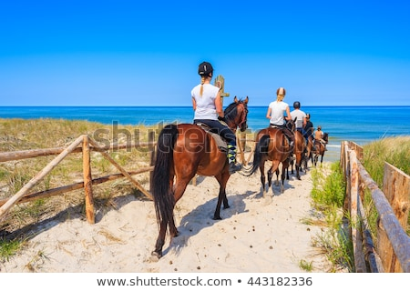 Woman riding horse on the beach Stock photo © IS2