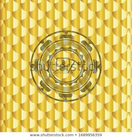 Valuta teken icon gekleurd vector logo Stockfoto © tashatuvango