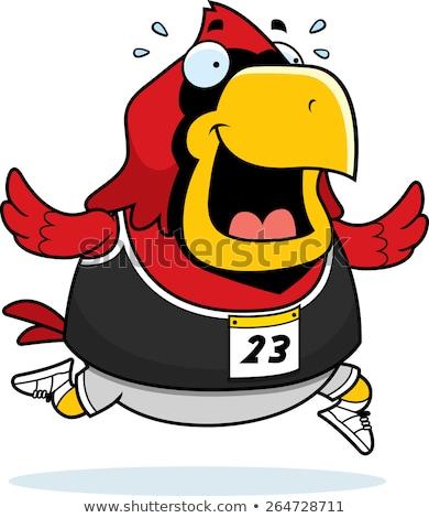 Karikatür çalışma yarış mutlu kuş egzersiz Stok fotoğraf © cthoman