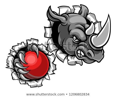 Rhino Holding Cricket Ball Breaking Background Stock photo © Krisdog