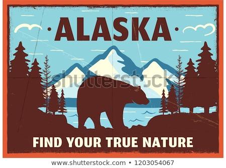 Alaszka kitűző terv hegy kaland folt Stock fotó © JeksonGraphics