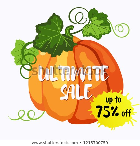 Ultimate sale vector design with ripe pumpkin Stock photo © TasiPas