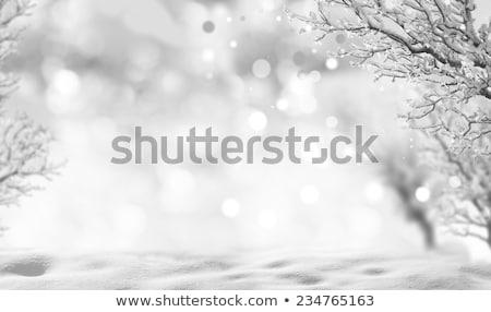 Branco nuvens queda de neve conjunto neve transparente Foto stock © romvo