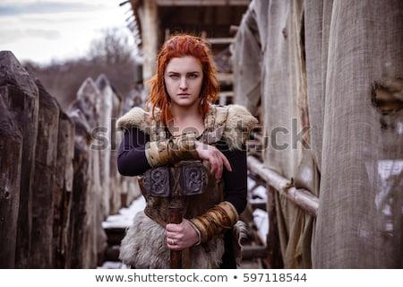 gyönyörű · harcos · nő · kép · viking · sisak - stock fotó © stasia04