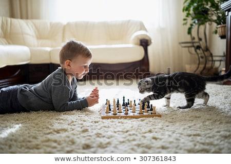 Familia jugando ajedrez torneo habitación aprendizaje Foto stock © Kzenon