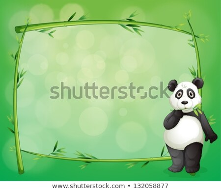 Four border templates with panda and bamboo Stock photo © colematt