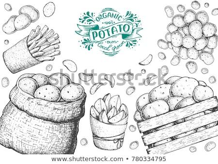 Pacote esboço monocromático ícone Foto stock © robuart
