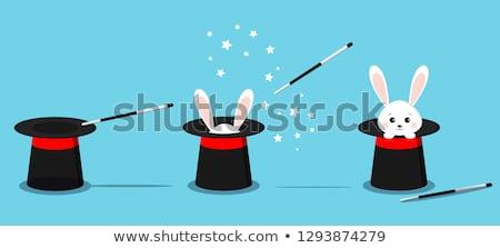 漫画 マジシャン 黒白 実例 魔法の杖 ストックフォト © bennerdesign
