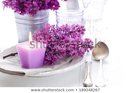 Festive wedding table setting. Empty wine glasses Stock photo © ruslanshramko